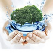 Выбор канализации для дачи или загородного дома
