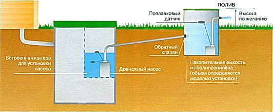 Очищенные стоки можно использовать для полива