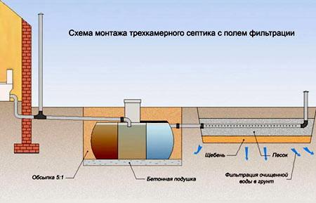 Схематичное изображение полей фильтрации для септика